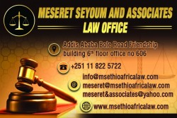 Meseret Seyoum and Associates Law Office