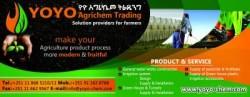 Yoyo Agrichem Trading
